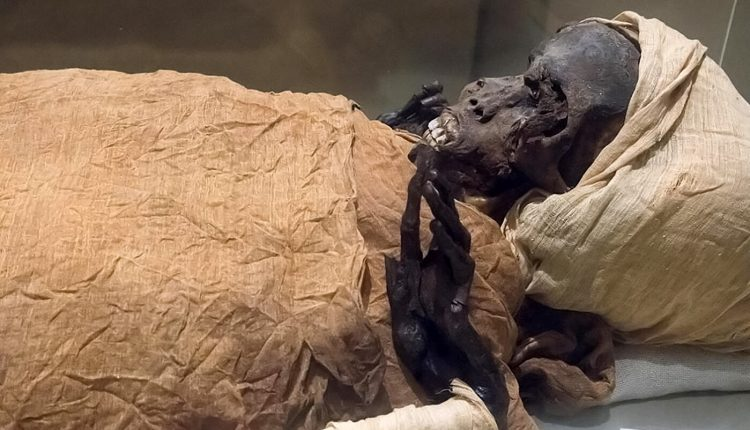 Égypte : Ramsès II et Hatchepsout, vedettes d'un défilé de momies au Caire